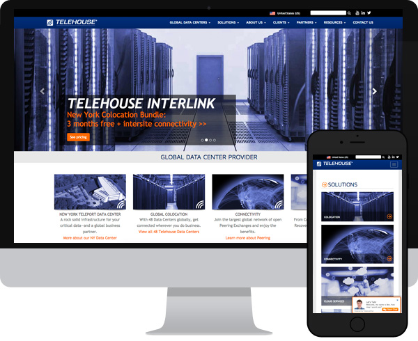 Telehouse Wordpress Salesforce
